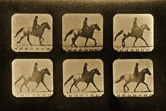 eadweard-muybridge-horses-irregular-animal-locomotion-series-c-1881