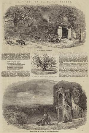 edward-duncan-sketches-in-hainault-forest