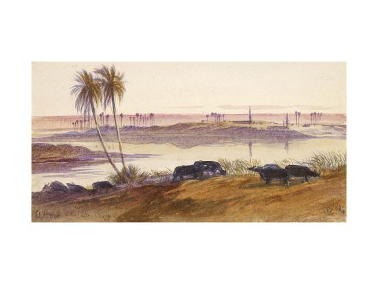 edward-lear-el-hon-egypt-1884