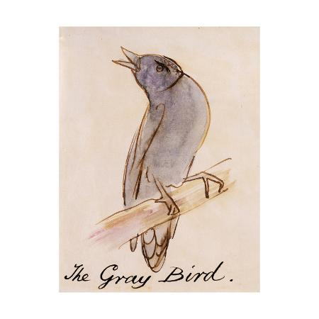edward-lear-the-gray-bird