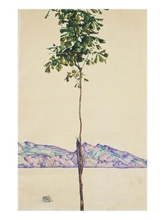 egon-schiele-little-tree-chestnut-tree-at-lake-constance