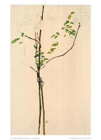 egon-schiele-young-tree