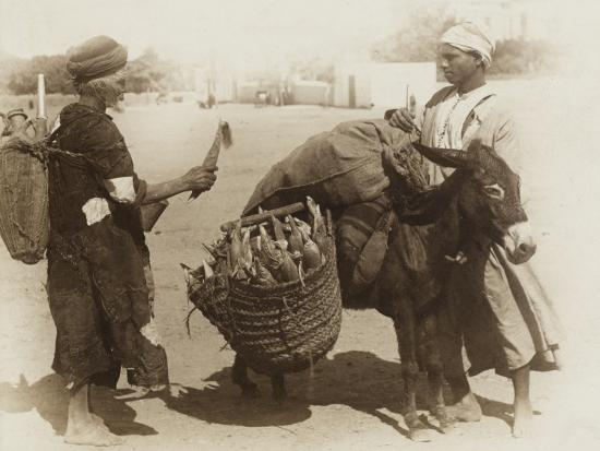 egypt-buying-corn-from-a-donkey-s-panniers