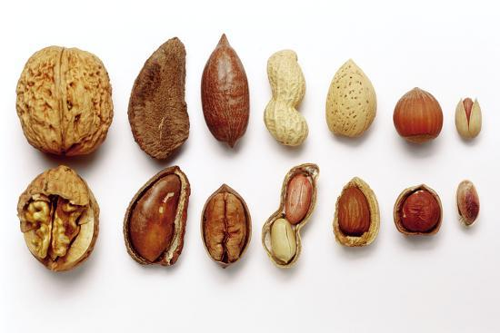 eising-studio-food-photo-and-video-various-nuts-shelled-and-unshelled