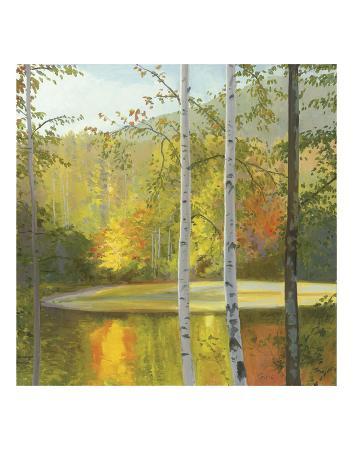 elissa-gore-cooper-lake-autumn
