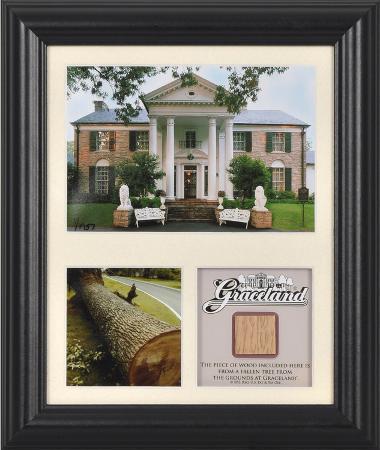 elvis-presley-graceland-framed-presentation-with-piece-of-tree