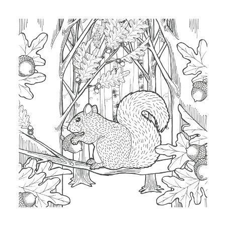 elyse-deneige-color-the-forest-viii