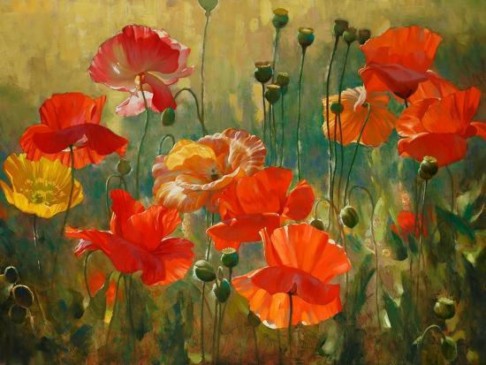 emma-styles-poppy-fields
