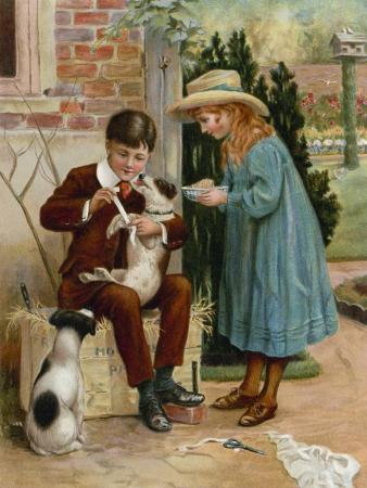 english-school-the-boy-doctor