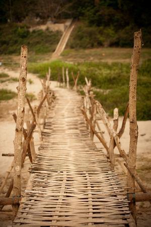 erin-berzel-bamboo-bridge