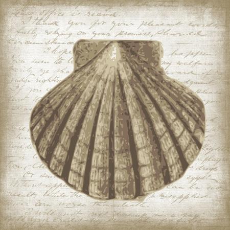erin-clark-shell-i