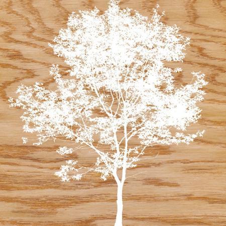 erin-clark-snowy-tree