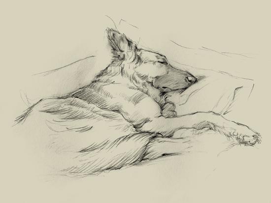 ethan-harper-dog-days-iv