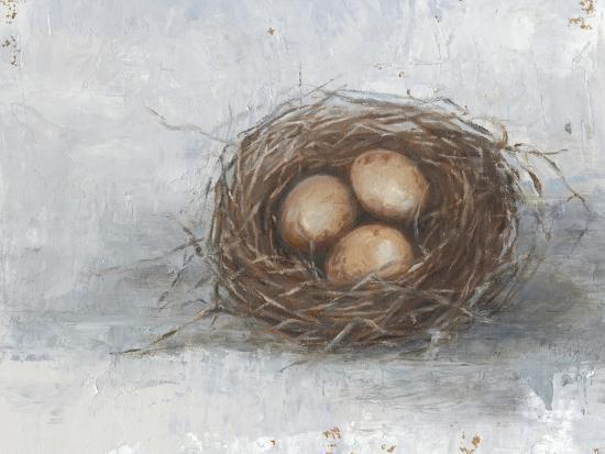 ethan-harper-rustic-bird-nest-ii