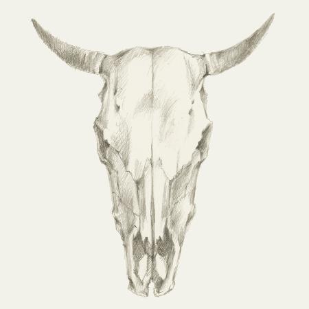 ethan-harper-western-skull-mount-i