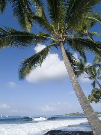 ethel-davies-beach-at-kailua-kona-island-of-hawaii-big-island-hawaii-usa