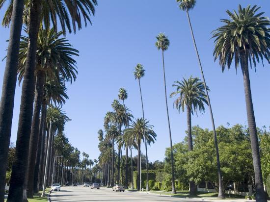 ethel-davies-beverly-drive-beverly-hills-california-usa