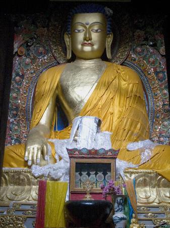 ethel-davies-buddha-mindroling-monastery-tibet-china