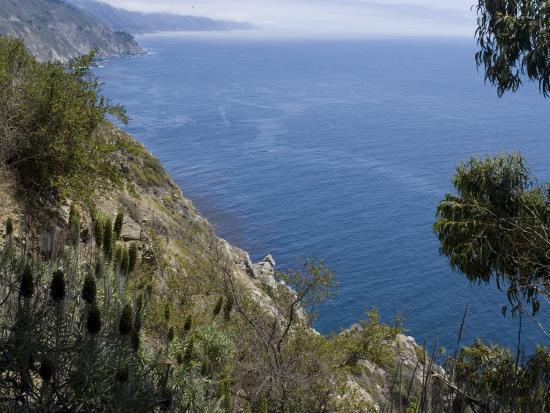 ethel-davies-coastline-view-big-sur-california-united-states-of-america-north-america