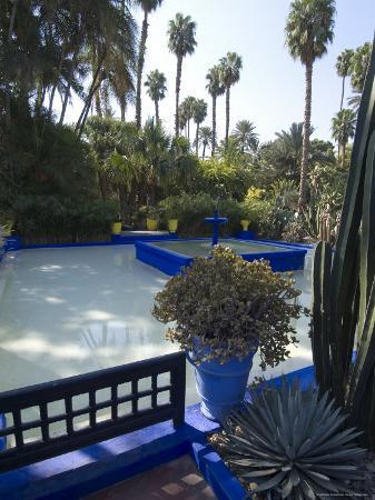 ethel-davies-jardin-majorelle-marrakech-morocco-north-africa-africa