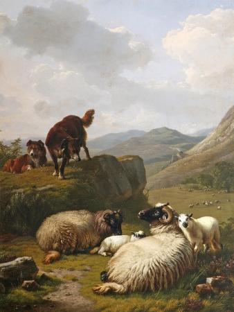 eugene-joseph-verboeckhoven-sheep-and-dogs-1861