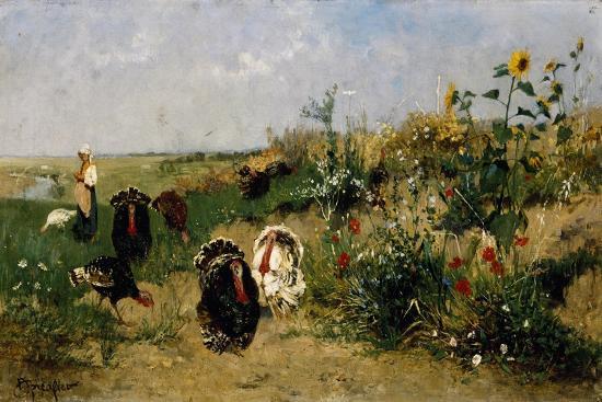 eugenio-spreafico-turkeys-1850