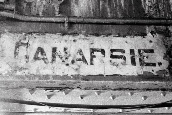 evan-morris-cohen-canarsie