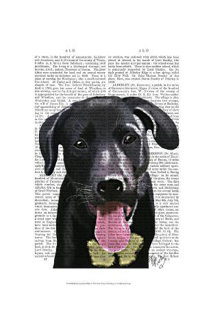 fab-funky-black-labrador-plain