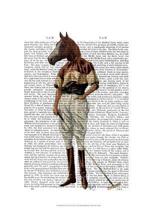 fab-funky-polo-horse-full