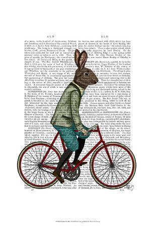 fab-funky-rabbit-on-bike