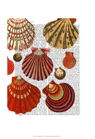 fab-funky-red-clam-shells