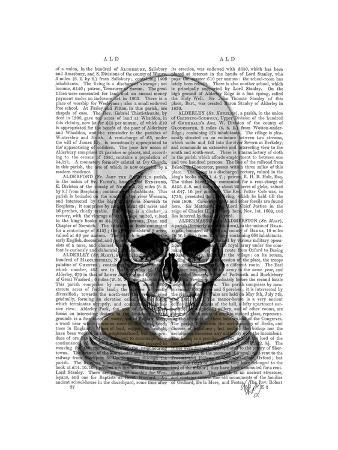 fab-funky-skull-in-bell-jar