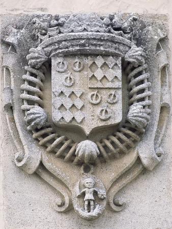 family-crest-chateau-de-la-roche-courbon-saint-porchaire-poitou-charentes-detail-france
