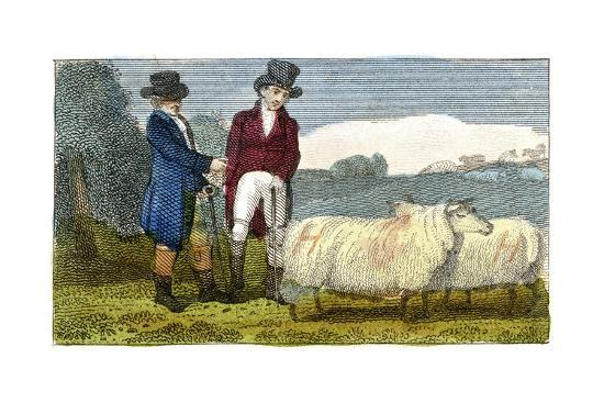 farmers-discussing-dishley-new-leiceste-sheep-1822