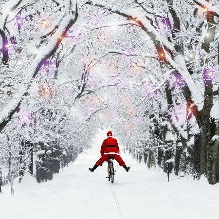 father-christmas-riding-through-avenue-in-winter