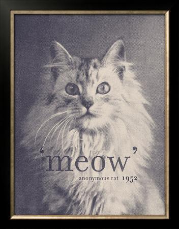 florent-bodart-famous-quote-cat