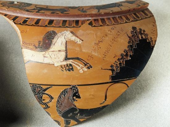 fragment-of-dinos