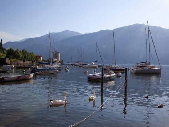 frank-fell-boat-harbour-and-lake-bellagio-lake-como-lombardy-italian-lakes-italy-europe
