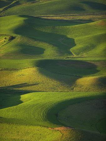 frank-lukasseck-green-hills