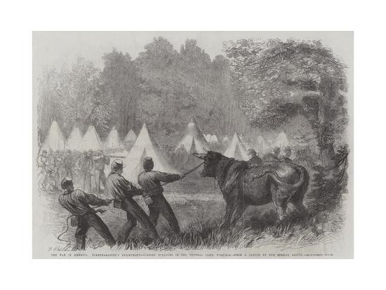 frederick-john-skill-the-war-in-america-quartermaster-s-department-killing-bullocks-in-the-federal-camp-virginia