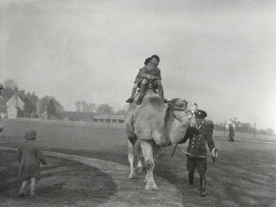 frederick-william-bond-an-arabian-camel-taking-a-pair-of-children-for-a-ride-at-zsl-whipsnade-march-1932