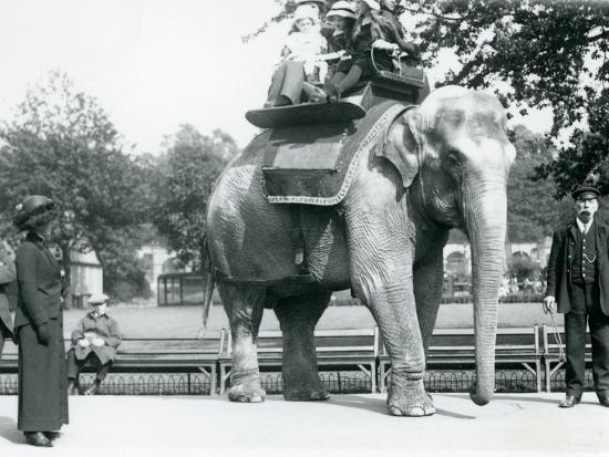 frederick-william-bond-female-indian-elephant-lukhi-giving-children-a-ride-with-keeper-charles-eyles
