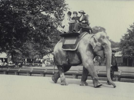 frederick-william-bond-three-ladies-being-given-a-ride-on-an-asian-elephant-lead-by-a-keeper-at-london-zoo-may-1914