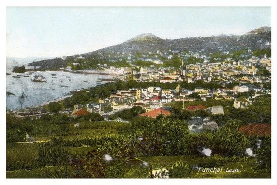 funchal-madeira-early-20th-century
