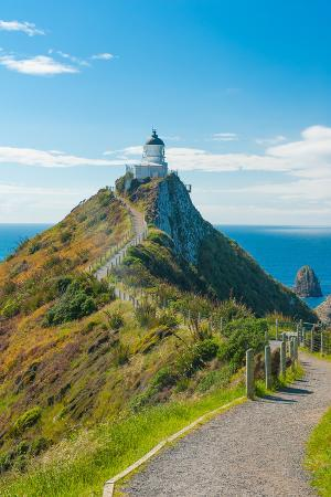 fyle-nugget-point