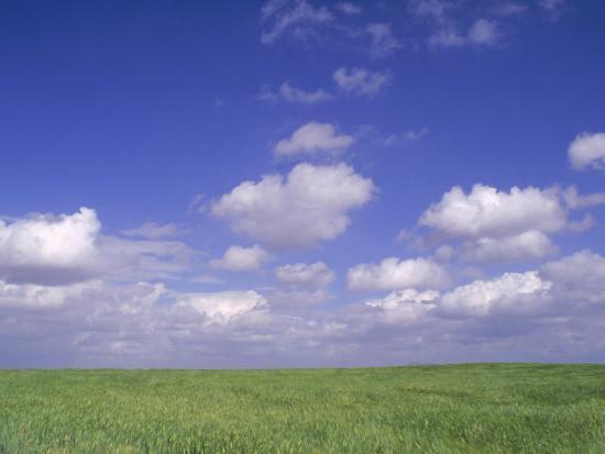 gary-conner-wheat-fields-near-antequera-spain