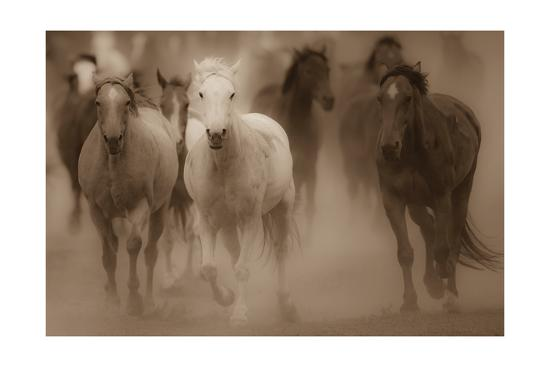 gary-crandall-sepia-horses