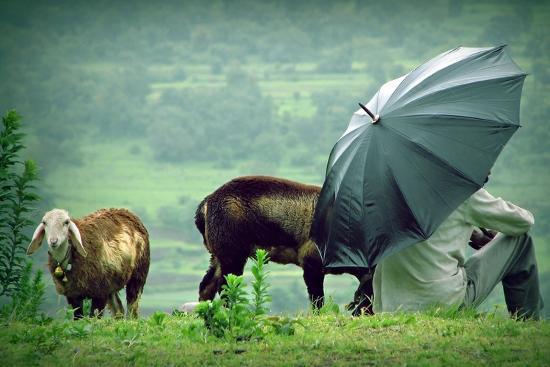 gaurav-patil-lavasa-rain