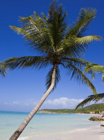 gavin-hellier-dickenson-bay-beach-antigua-leeward-islands-west-indies-caribbean