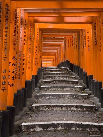 gavin-hellier-torii-gates-fushimi-inari-taisha-shrine-kyoto-honshu-japan